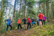 Stage trail Vosges